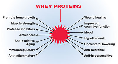 Making Protein Choices To Boost Energy And Improve Your Health